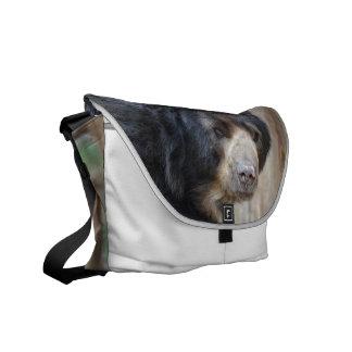 Cara fantástica de un oso negro bolsas de mensajeria