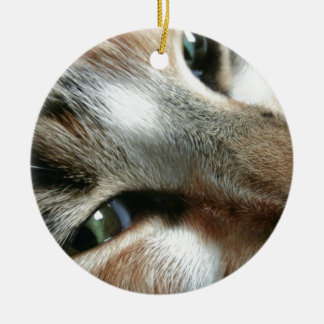 Cara felina adorno navideño redondo de cerámica