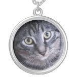 Cara gris adorable del gato collares personalizados