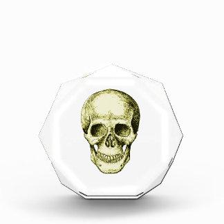 Cara humana de bronce del cráneo