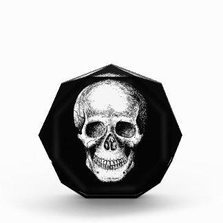 Cara humana del blanco del cráneo