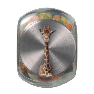 Cara linda de la jirafa jarras de cristal