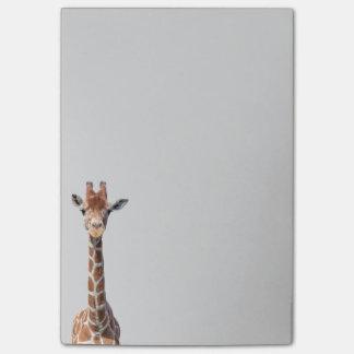 Cara linda de la jirafa notas post-it®