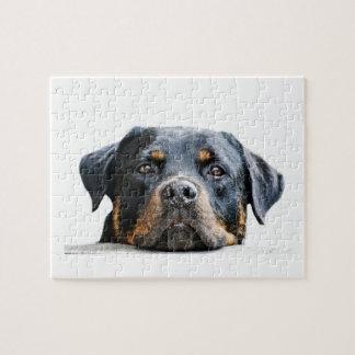 Cara linda de la raza del perro de Rottweiler Rompecabezas