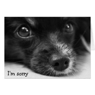 """Cara linda del perrito """"soy"""" tarjeta triste"""