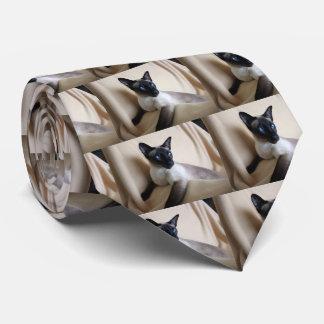 Cara magnífica del gato siamés corbatas personalizadas