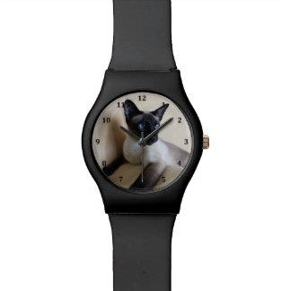 Cara magnífica del gato siamés reloj de mano