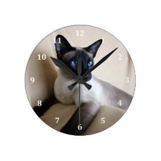 Cara magnífica del gato siamés reloj redondo mediano