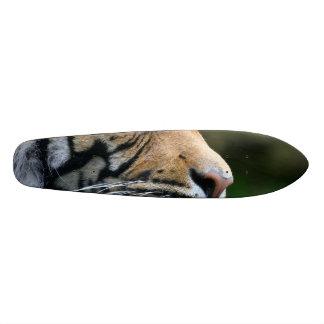 Cara magnífica del tigre de Bengala Patín Personalizado