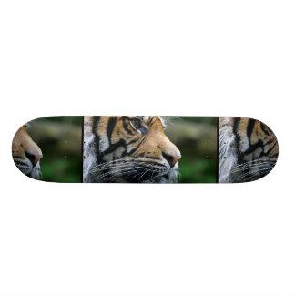 Cara magnífica del tigre de Bengala Monopatines Personalizados