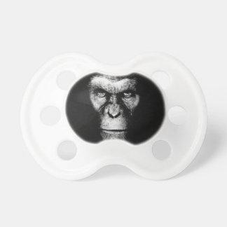 Cara monocromática del mono chupetes