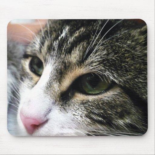 Cara Mousepad del gato Tapete De Ratones