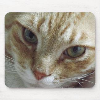 Cara Mousepad del gato Alfombrilla De Ratones