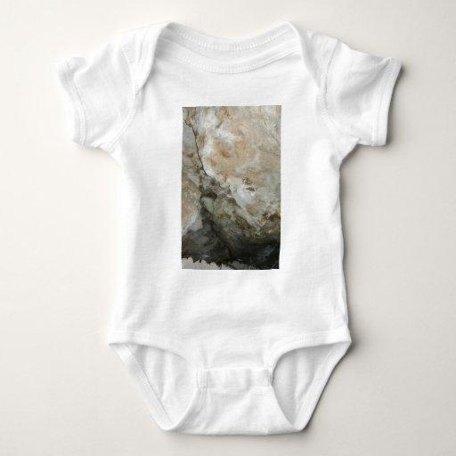 Cara New México Carslbad de la roca T Shirt