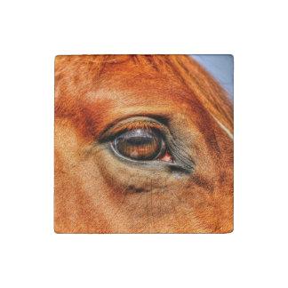 Cara y ojo rojos foto del caballo del Dun de los Imán De Piedra
