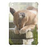 Caracal Lynx  Cover For The iPad Mini