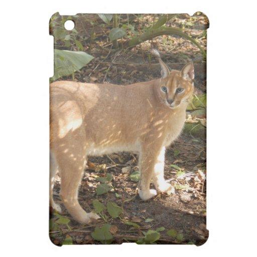 Caracal Lynx  iPad Mini Case