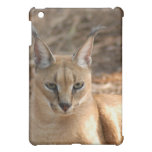 Caracal Lynx  iPad Mini Cover