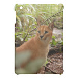Caracal Lynx  iPad Mini Covers
