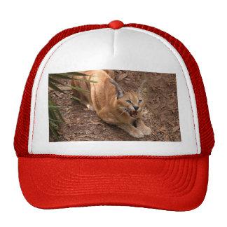 CaracalBCR004 Trucker Hat