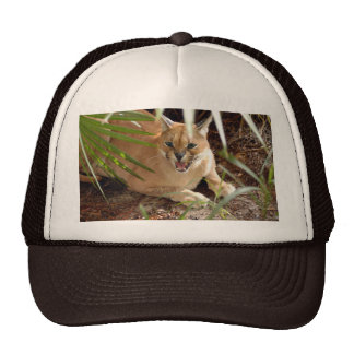 CaracalBCR047 Trucker Hat