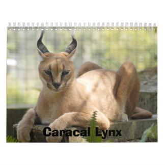 CaracalBCR058, lince de Caracal Calendarios