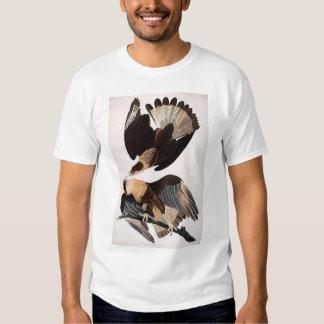Caracara brasileño Eagle Polera