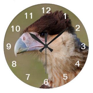 Caracara con cresta reloj redondo grande