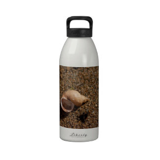 Caracol de agua dulce Shell; Ningún texto Botellas De Agua Reutilizables