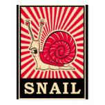 Caracol del arte pop tarjetas postales