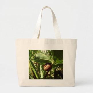 caracol disimulado bolsas