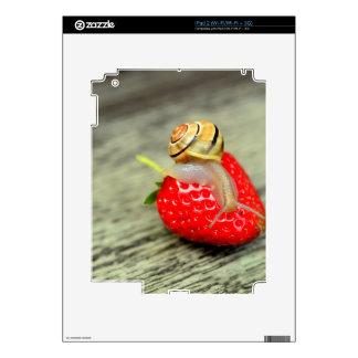 Caracol en la fresa skin para el iPad 2