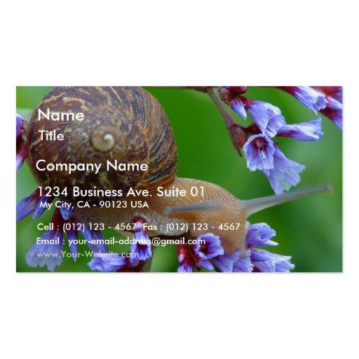Caracol en las flores tarjetas de visita