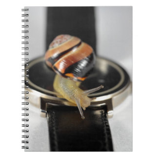 Caracol en un reloj cuaderno