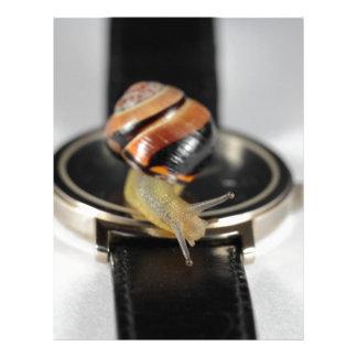 Caracol en un reloj membrete