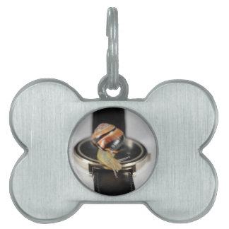 Caracol en un reloj placa mascota