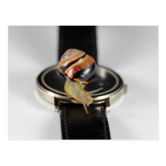 Caracol en un reloj postal