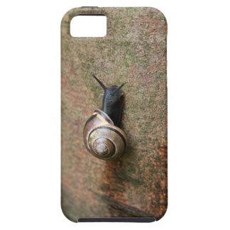 Caracol iPhone 5 Carcasas