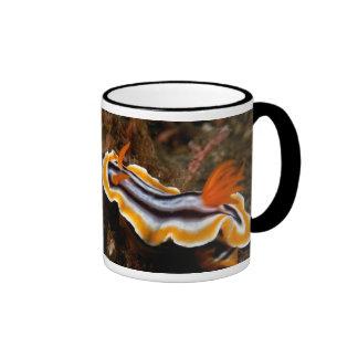 Caracol subacuático tazas de café