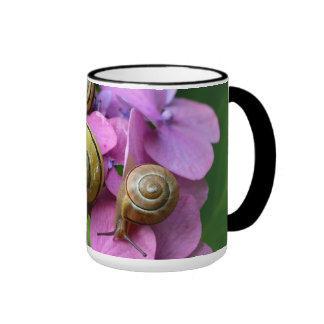 Caracoles de Cepaea en la flor púrpura Taza De Dos Colores