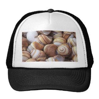 Caracoles Gorras