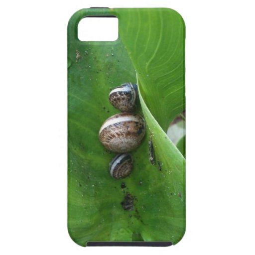 caracoles iPhone 5 Case-Mate carcasas