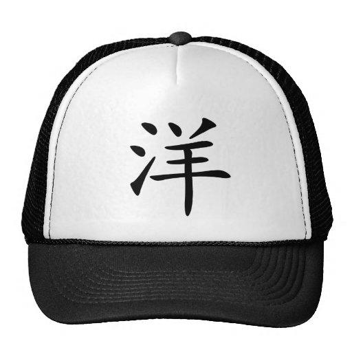 Carácter chino: yang, significando: océano, extran gorra
