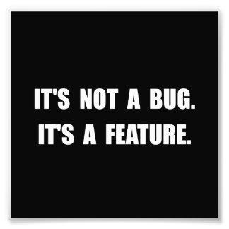 Característica del insecto fotografía
