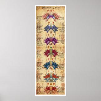 Características de Chakras - estilo contrastivo Póster
