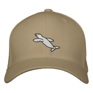 Carahil Embroidered Hat