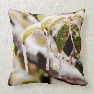 Carámbanos en las hojas del laurel de montaña cojín