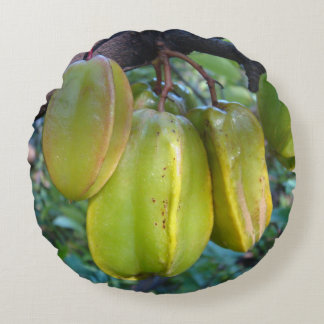 Carambola is a medium sized fruit trees round pillow