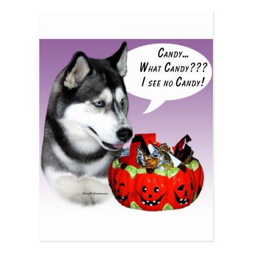 Caramelo de Halloween del husky siberiano (negro) Tarjetas Postales