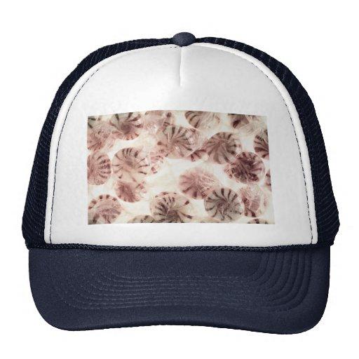 Caramelo delicioso gorras